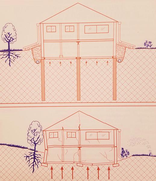 illustration of foundation landscaping