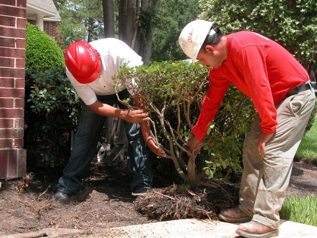 olshan crew repairs foundation in baton rouge